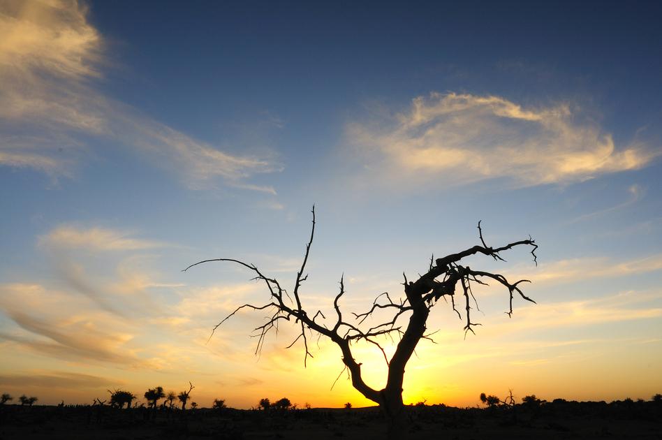2010《国家地理》全球摄影大赛-自然景观
