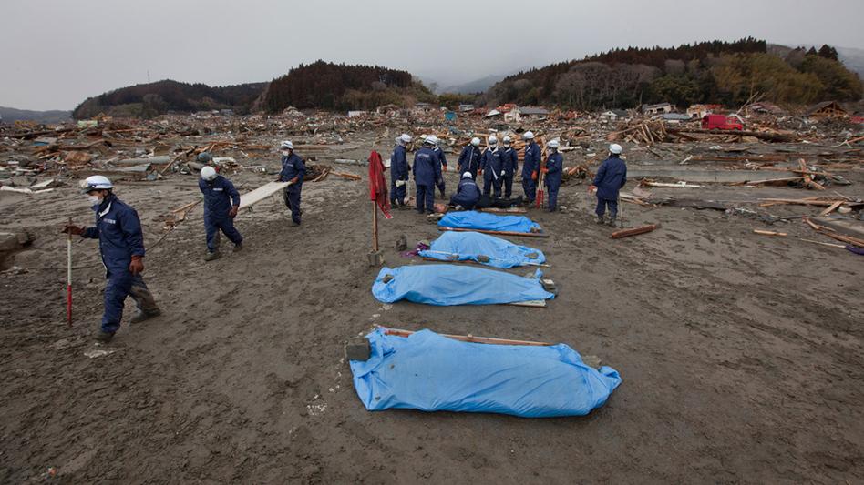 滚动高清图:日本发生9.0级强震(6)