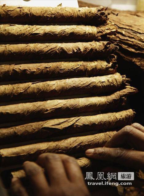 揭秘古巴顶级雪茄纯手工制作过程