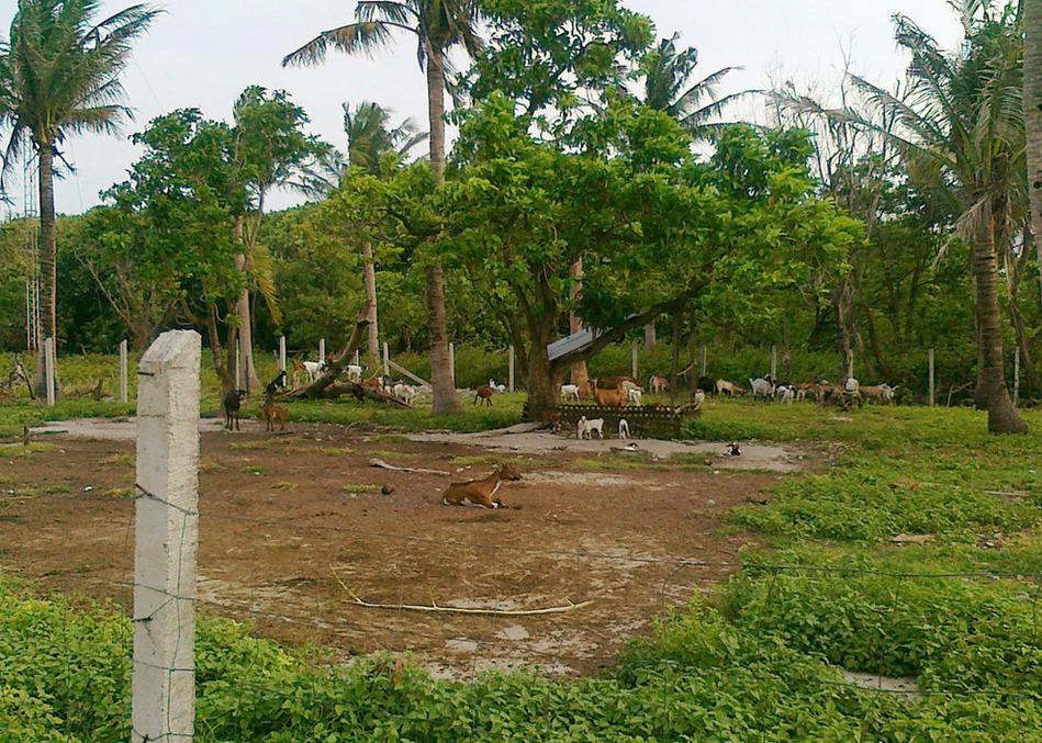 菲律宾公布占领南沙岛屿最新照片