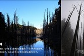 不同的时间、不同的季节、不同的气候,有着不同的变化和美感。