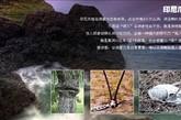 印尼爪哇谷洞,是印度尼西亚一个诡秘危险的山洞。此谷中有6个大山洞,洞呈喇叭状,都是大陷阱。被认为是经过也可能遇难的死亡之洞。