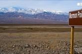 死亡谷虽然被视为地球上最不适于居住的地区之一,但是却生长着一些适应力奇强无比的生物。除了响尾蛇、蝎子之外,还有一些像是沙漠壁虎、小狐狸、大角山羊、老鹰等,它们出没的时间,大多集中在日出前或是傍晚时分。