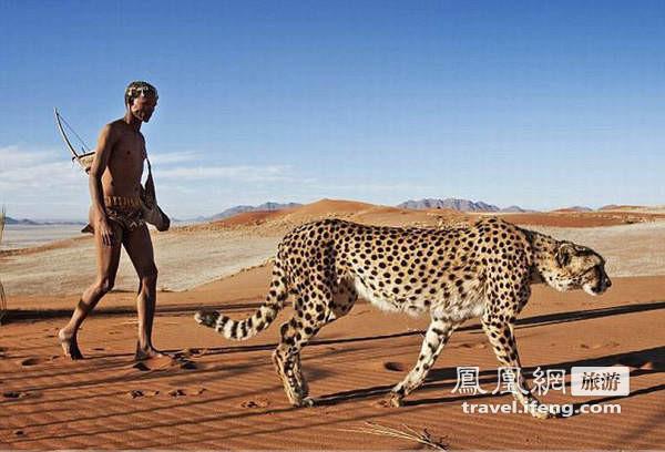 非洲奇观 土著带猎豹一同狩猎