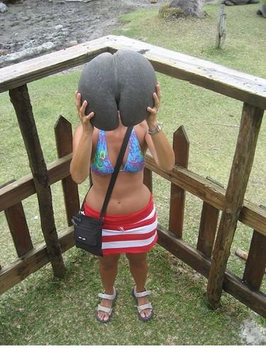 膜拜!酷似人体的性感海椰子
