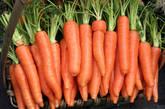 胡萝卜  含有丰富的钾,有降血压的作用,食物纤维能发挥整肠功效。B-胡萝!卜素会在体内变化成维生素A,提升身体的抵抗力,抑制导致细胞恶化的活性氧等。此外,因含有丰富的钾,具有降血压的作用,以及食物纤维能发挥整肠功效。含丰富B-胡萝卜素的胡萝卜也因此大受欢迎,是因为它能预防癌症。