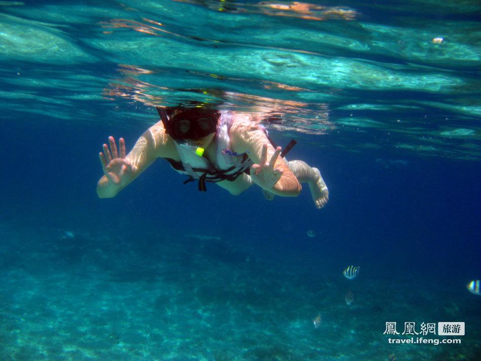 热浪岛浮潜热带鱼夏日嬷嬷茶恋爱蜜月婚礼祝福凤凰网