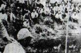 """南京大屠杀期间,日军官兵私自拍摄的日军砍杀国军俘虏""""试斩""""的过程。"""