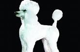为了完美呈现出贵宾狗身上蓬松的毛,Karen利用棉花糖作装饰。