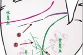初期肝癌手相感情线上有许多细短线横切。水星丘胀高,多纵横小纹且模糊不清。此处的感情线通常较薄或有断口。健康线含糊而浅,有岔线。金星丘或月丘发红,有红、紫、茶色斑点。