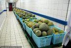 探访上海航空食品装配车间