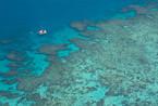 大堡礁会在2050年消亡吗?