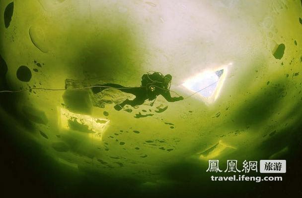 北极冰层下与鲸共舞 水中探险诠释和谐