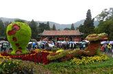2011年11月5日,北京香山公园迎来观赏红叶的游客高峰。随着2011北京香山红叶文化节渐进尾声,香山红叶也进入了最佳观赏期,变色率达到75%以上,吸引了众多市民和游客前来观赏。