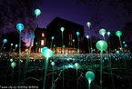 英国赫尔本博物馆圣诞灯饰美如幻境