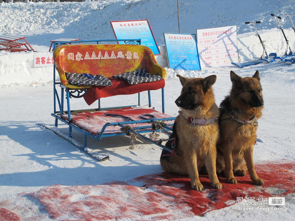 2012太阳岛雪博会 来自俄罗斯的冰情雪韵