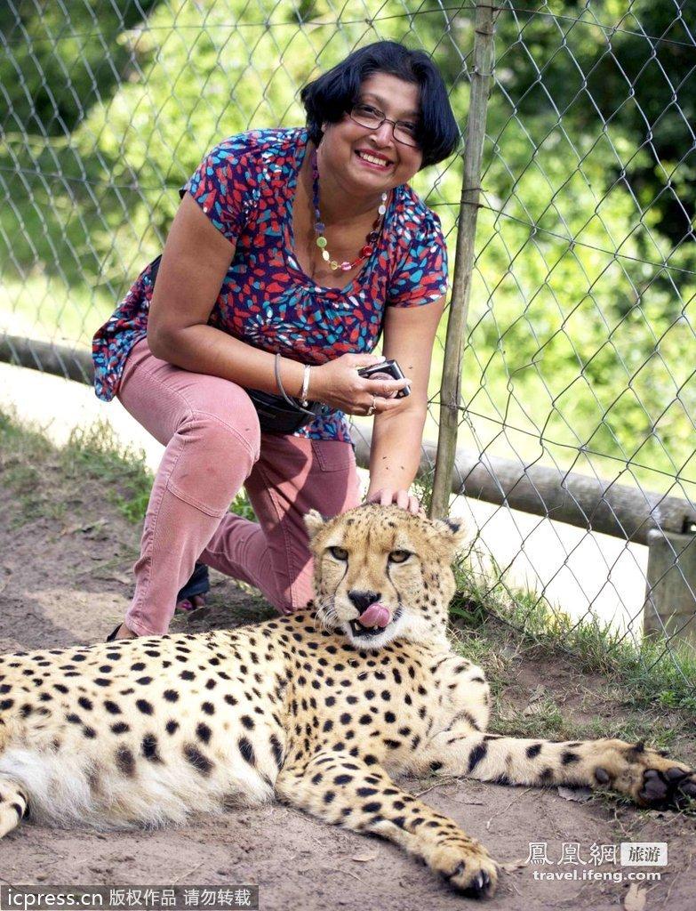 英国游客在南非遭猎豹袭击