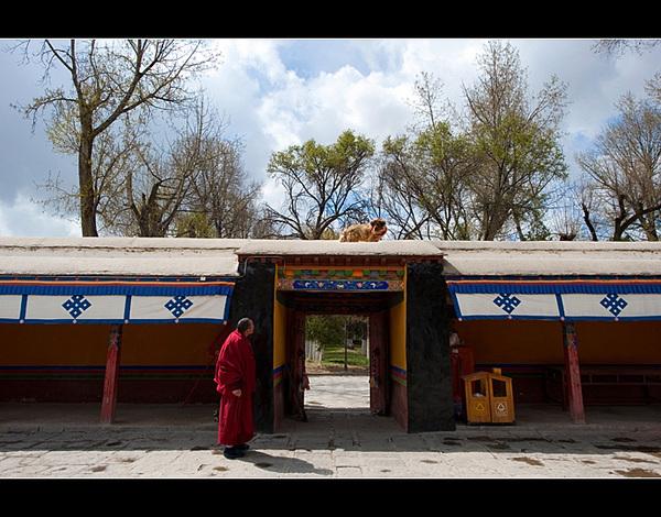 罗布林卡:历代达赖喇嘛的夏宫 - 静水流深 - 静水流深