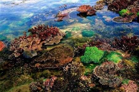 在舟山本岛,以及从舟山本岛出发,到六横岛,佛渡岛,悬山岛,虾峙岛,桃花