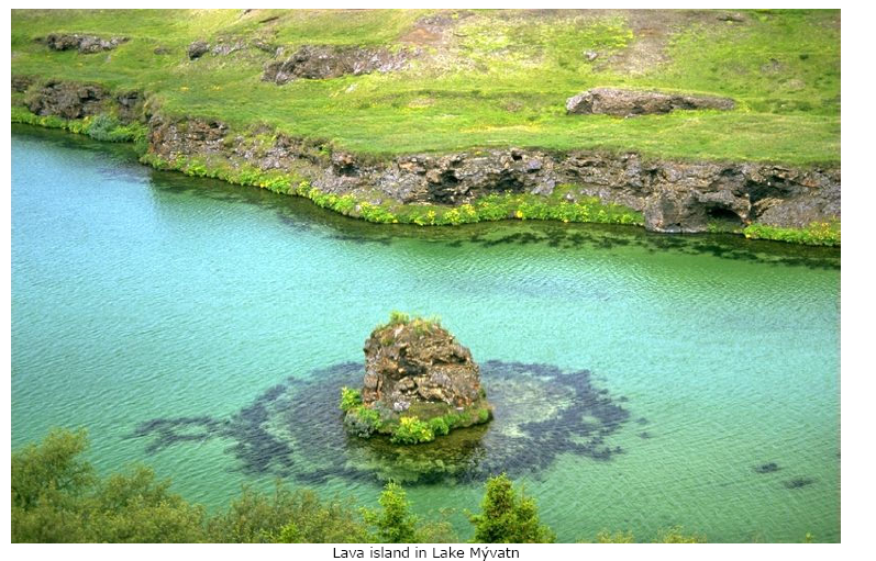 黄怒波冰岛拟购地块实景图[高清组图]