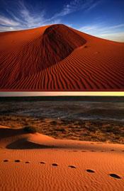 澳大利亚辛普森沙漠