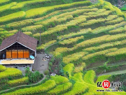 摆榜梯田位于贵州省惠水县一个苗族乡村