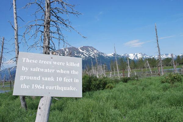 地震对地理地貌,植物生长及动物生活带来的巨大变化