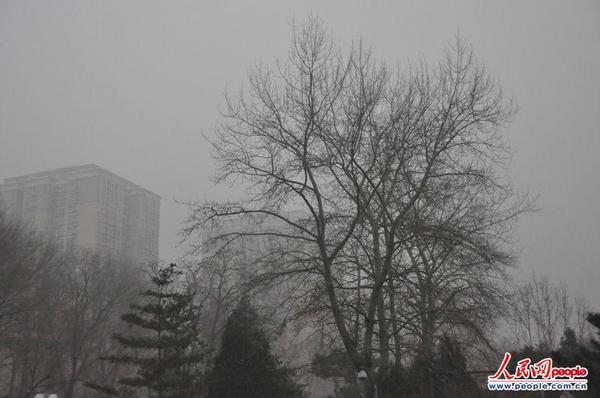 组图:气象台发布寒潮蓝色预警 黄淮江淮等地有