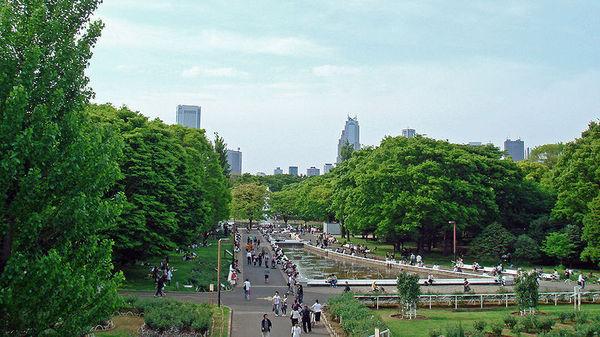 代代木公园(资料图片)
