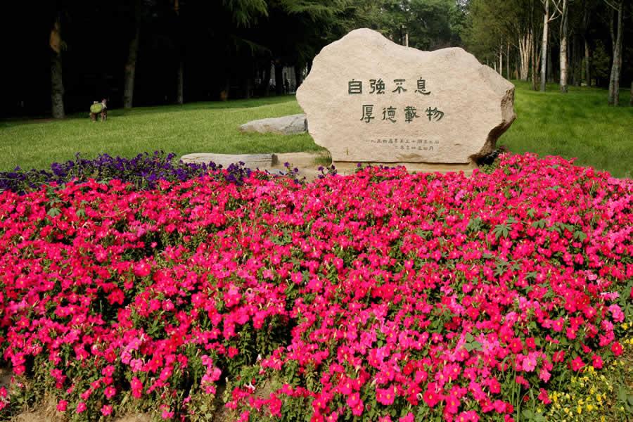 高清:清华大学校园风光