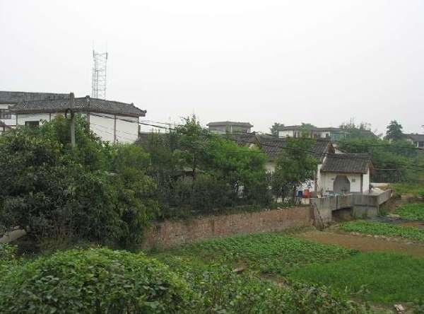 农村建农家院设计图-重庆欲建乡村生态旅游园 推渝版农家乐 五朵金花
