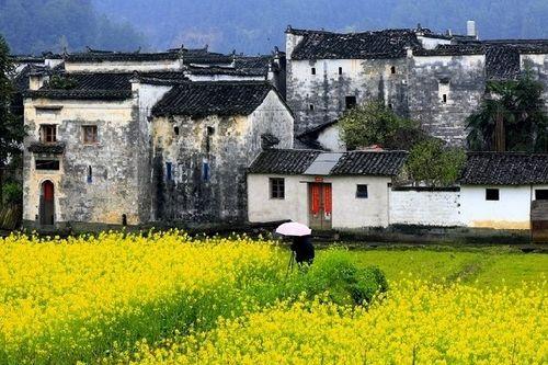 江南小镇风景如画 休闲放松自驾旅游攻略