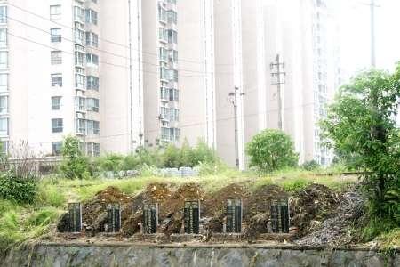 青山湖风景区门前建连片坟墓