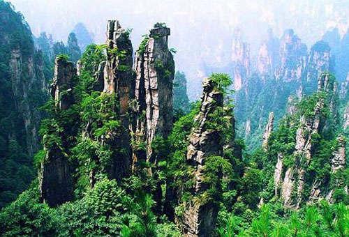 """已与张家界国家森林公园结为""""姐妹公园""""的台湾垦丁公园,将提供大型"""