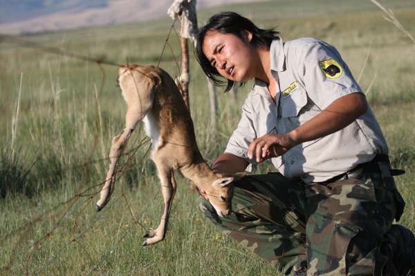 黑豹野生动物保护站供图