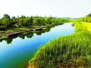重庆茶园新区经济gdp_郭家沱大桥新开工,江南新城今年还将建一大波项目